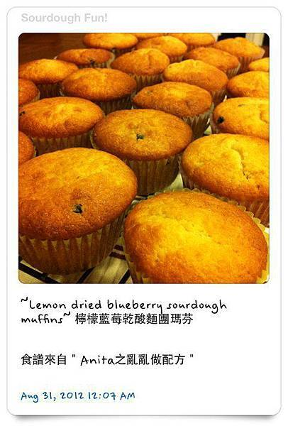 Sourdough MUFFINS﹣ LEMON dried blueberry
