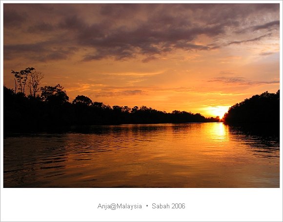《沙巴遊船體驗》馬來西亞.沙巴的夕照紅樹林與賞螢火蟲。