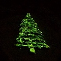 夜光聖誕樹3pc.jpg