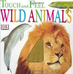touch & feel.jpg