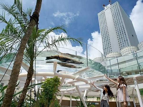 東京親子自由行池袋陽光水族館