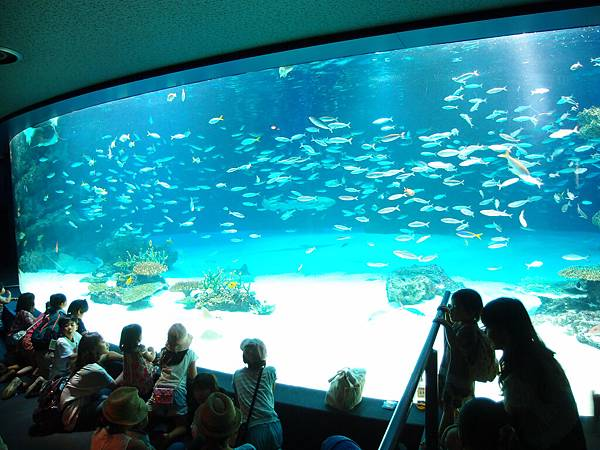 sunshine_aquarium_01.jpg
