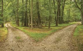 不一樣的路,造就了不一樣人生軌跡!