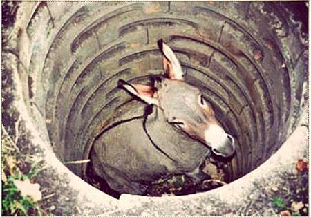 【超激勵】別怕周圍都是垃圾.井底之驢告訴你,轉一念,世界就不一樣!
