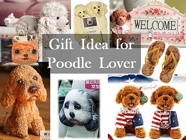 Poodle Cover.jpg