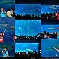 20140929-13洋博公園-超大觀景窗.jpg