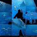 20140929-15洋博公園-超大觀景窗.jpg