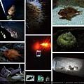 20140929-18美麗海水族館-深海小型生物.jpg