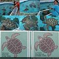 20140929-22海洋博公園-海海龜館.jpg