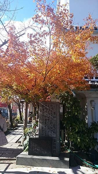 日本北九州柳川