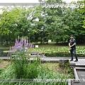 nEO_IMG_P1180513.jpg
