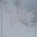 nEO_IMG_DSC_1425.jpg