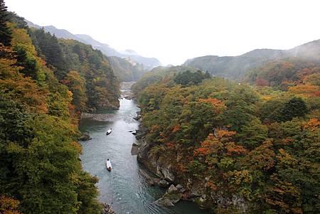 聽到遊客的尖叫聲,才想起方才泛的遊客會經過楯岩大吊橋...