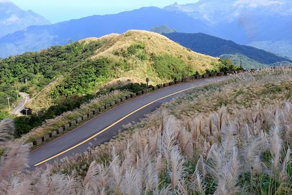 遠方的山頭是金瓜石茶壺山