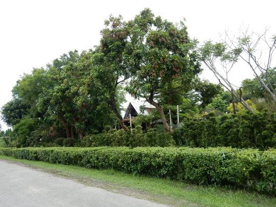 DSCN1122.JPG