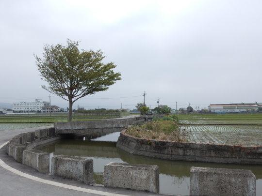 DSCN4810.JPG