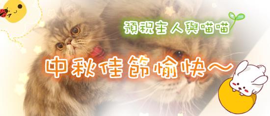 板橋糖果屋貓咪旅館-Google-首頁-中秋佳節愉快