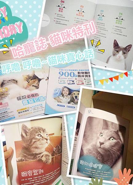 哈寵誌貓咪特刊 免費贈送.jpg