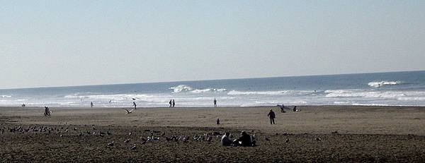 OceanBeach06BirdsWithTwoMen.jpg