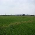好享受..  綠色   寧靜  悠閒....JPG