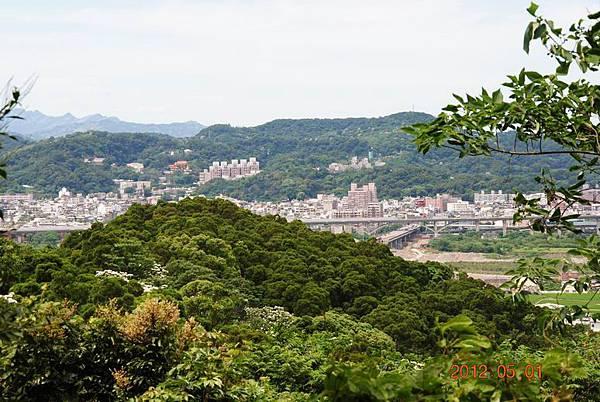 Resize of 芎林桐花步道 027