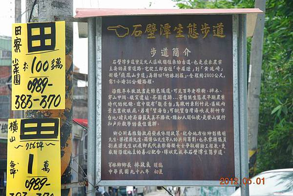 Resize of 芎林桐花步道 066