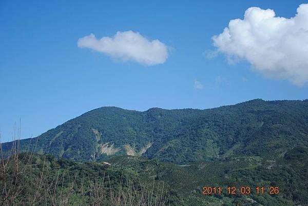 Resize of 2011阿肥七股 044