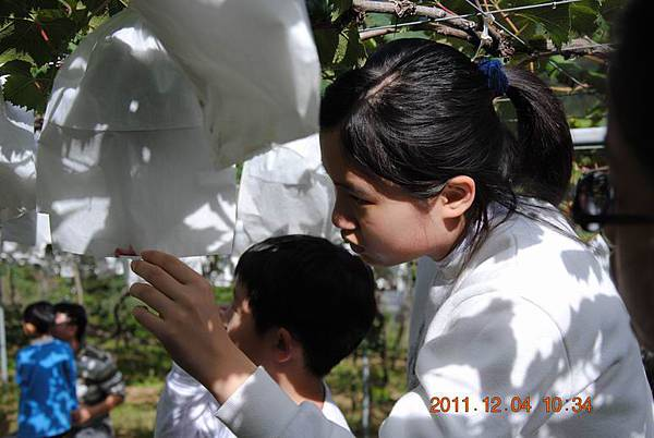 Resize of 2011阿肥七股 119