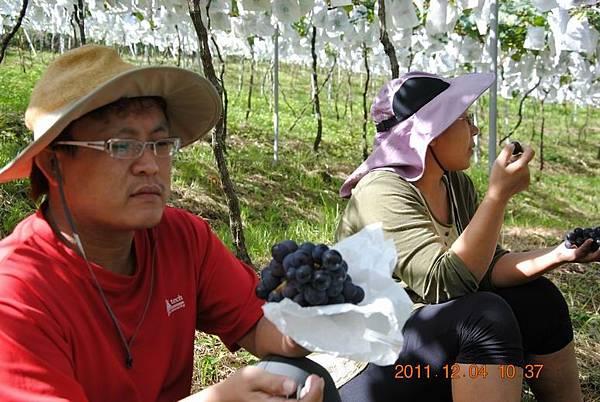 Resize of 2011阿肥七股 121