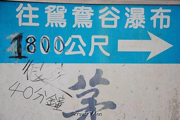 PhotoCap_032