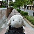 0318-延平郡王祠外街道.JPG