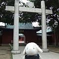 0318-延平郡王祠.JPG