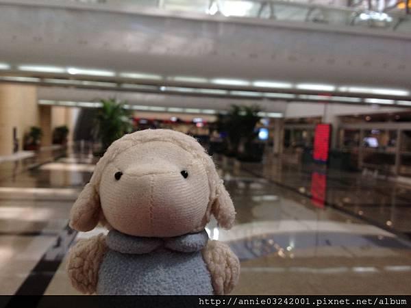 20121027 廈門機場