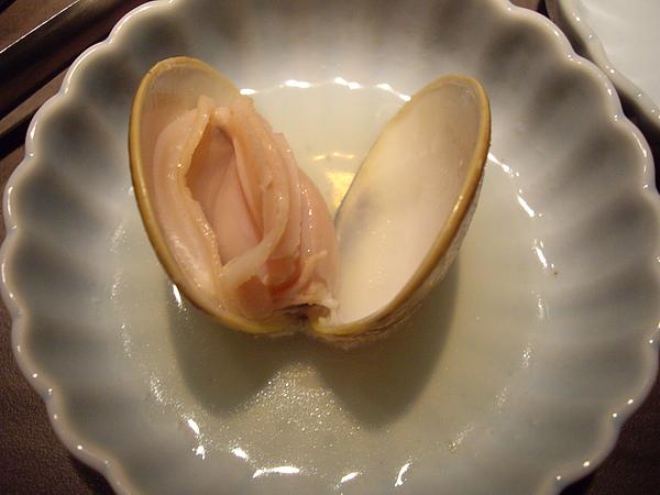 生日禮-大蛤蠣.JPG