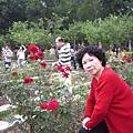 媽媽最愛植物和花