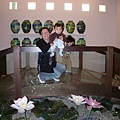 玻璃荷花池