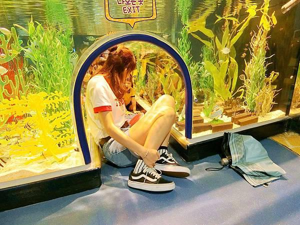 純PC行李箱之韓國旅遊1