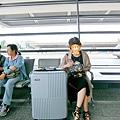 純PC行李箱之韓國旅遊15