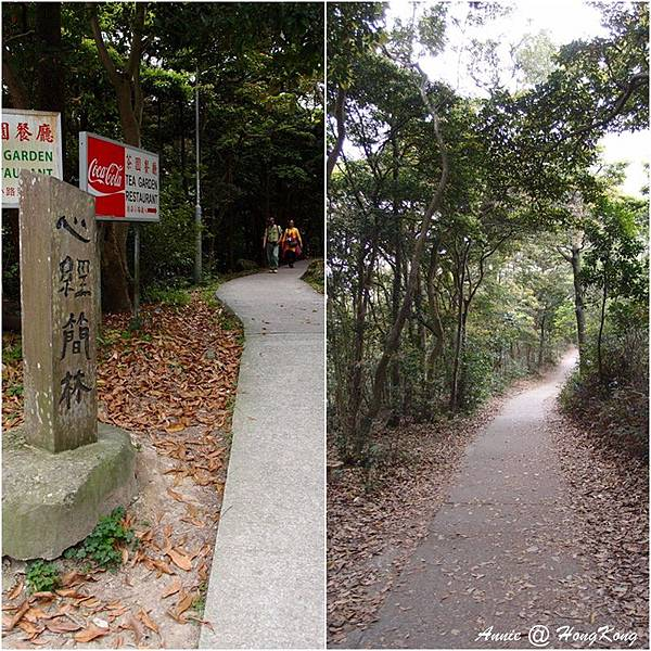 20160403 (121)page.jpg