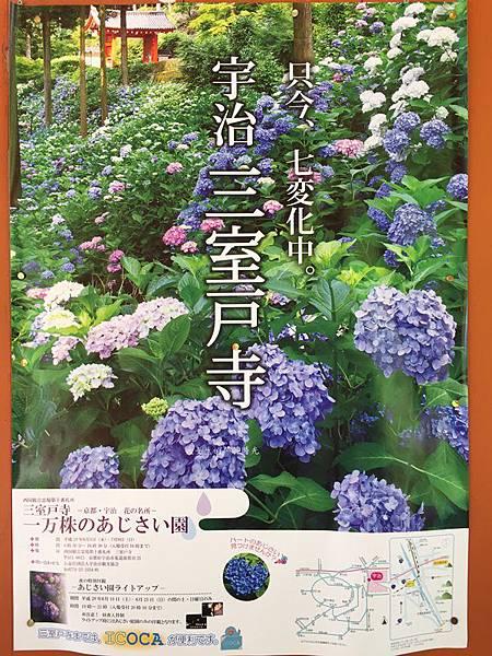 20170615三室戶寺 (8).JPG