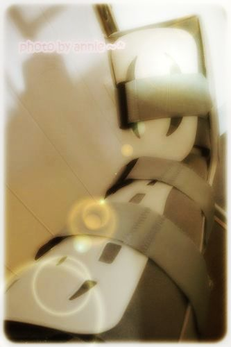 DSC01559_thumb.jpg