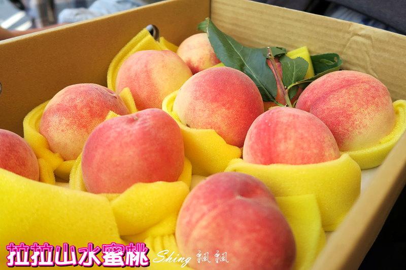桃園拉拉山水蜜桃季 01.jpg