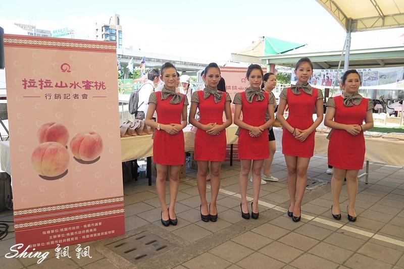 桃園拉拉山水蜜桃季 09.JPG