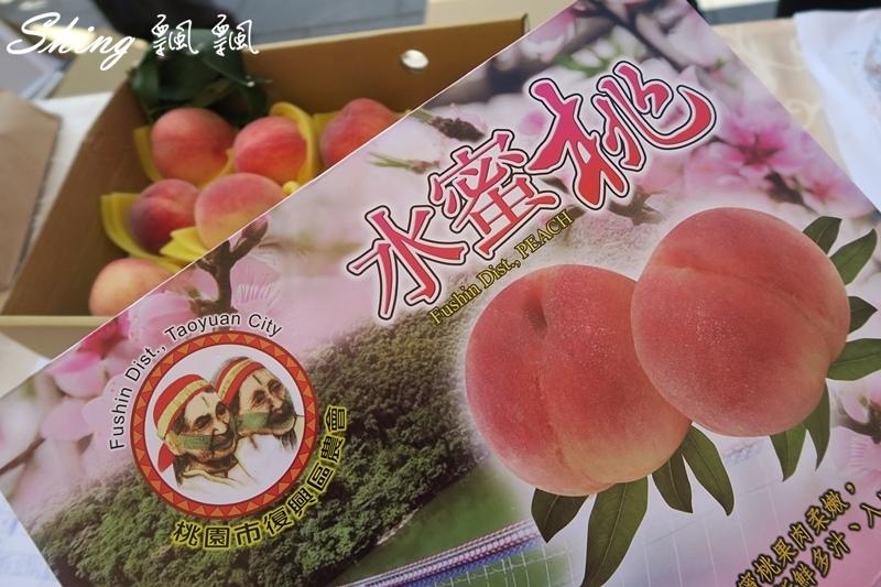 桃園拉拉山水蜜桃季 40.JPG
