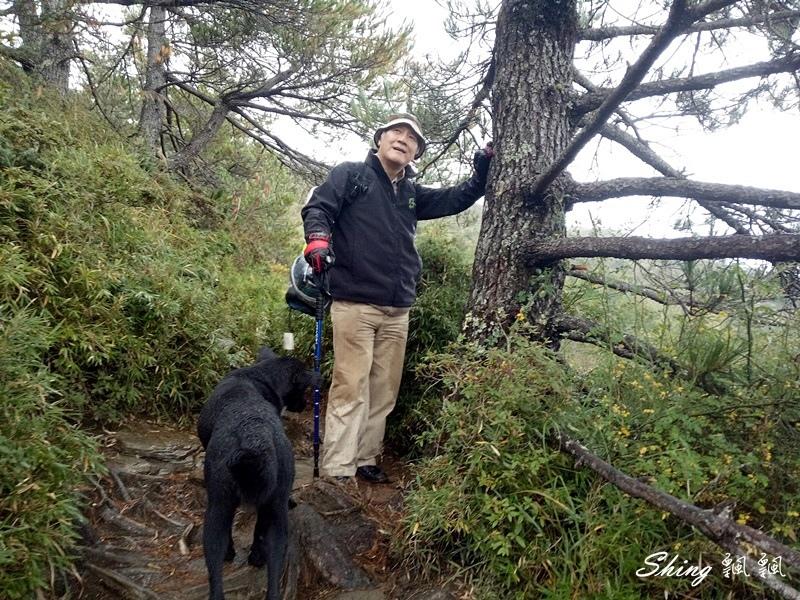 合歡山北峰 小溪營地露營11.jpg