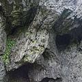 蘭嶼景點五孔洞 08.jpg