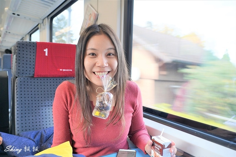 瑞士火車票Eurail Pass-瑞士旅遊必買優惠票劵,歐洲31國交通優惠 80.JPG