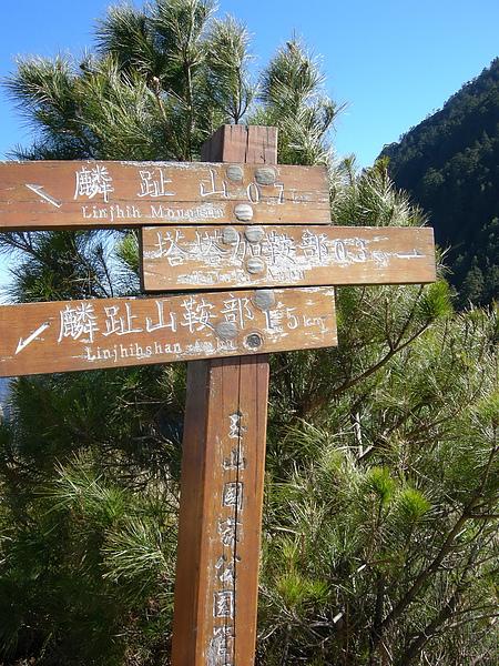 塔塔加鞍部登山活動 066.jpg