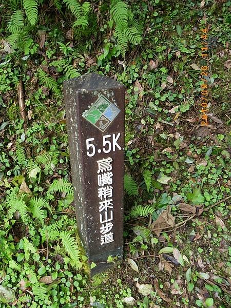 IMGP3220.JPG