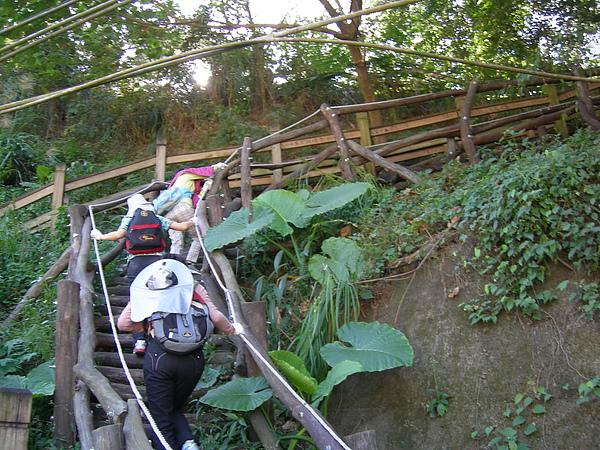 台美社登山隊大坑3號步道登山記 018.jpg